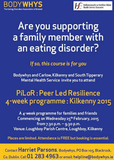 BodyWhys Course in Kilkenny (25 Feb 2015)