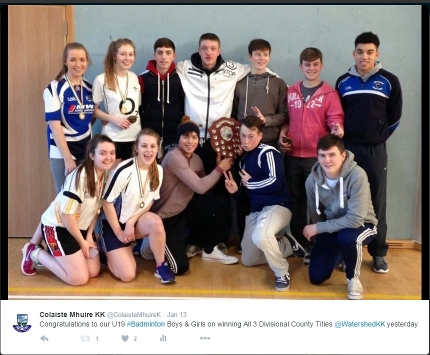 Coláiste Mhuire Johnstown - U19 Badminton County Champions 2016