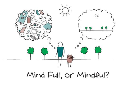 Mind Full v Mindful